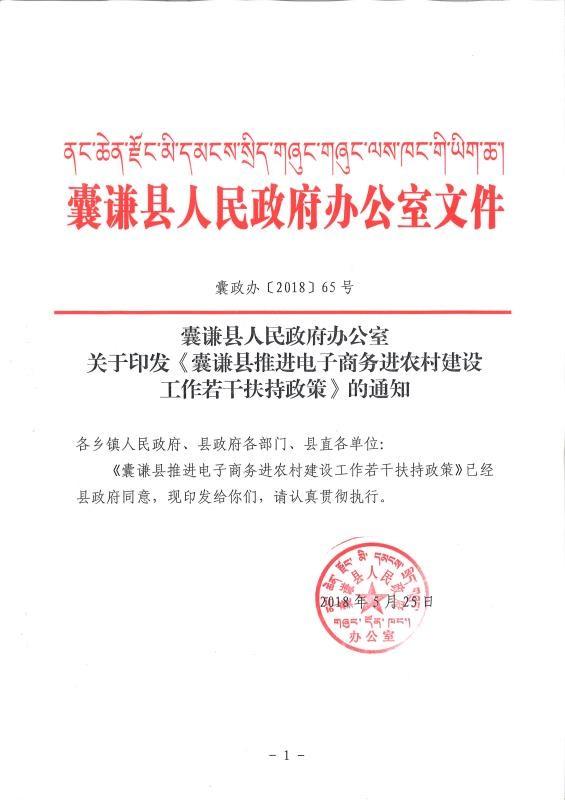 关于印发《囊谦县推进电子商务进农村建设工作若干扶持政策》的通知